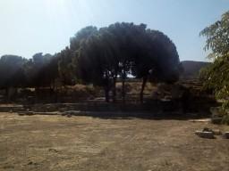 Древний Коринф. Место, где жил Диоген в своей бочке