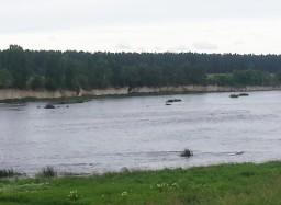Выбуты. Река Великая.