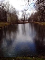 малый пруд №1